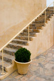 Monastary stairway with potted plant Stock Photos