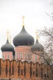 Monasterio de Donskcoi Foto de archivo