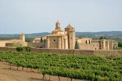 Monasterio de Poblet en el medio de viñedos Fotos de archivo libres de regalías