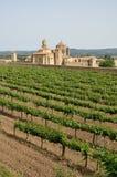Monasterio de Poblet en el medio de viñedos Fotos de archivo