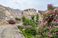 Monastero buddista isolato in montagne con gli arbusti rosa di fioritura Fotografia Stock Libera da Diritti