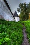 Monastero della parete di pietra in Zvenigorod Fotografie Stock