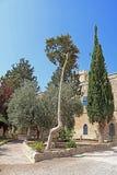 Monastero di Beit Jamal Catholic o di Beit Jimal vicino a Beit Shemesh Fotografia Stock