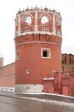 Monastero di Donskcoi Fotografie Stock