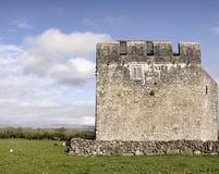 Monastero di Kilmacduagh Immagini Stock Libere da Diritti