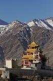 Monastero di Zangdok-Palri in Ladakh immagini stock libere da diritti