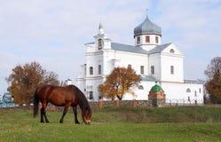 Monastero trasversale santo di Czartoryski Immagine Stock