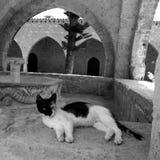 Monastery Aiya napa Cyprus Royalty Free Stock Photos