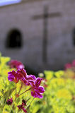 Monastery- Arequipa, Peru Stock Images