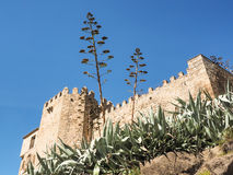 Monastery des los reyes with agaves, Toledo, Spain Royalty Free Stock Image