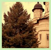 Monastery and a gorgeous pine tree. Royalty Free Stock Images