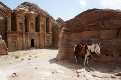 Monastery in Petra. Monastery is one of famoust monument in ancient nabatean city, Petra, in Jordan. A donkey standing in a shadow, waiting for passanger Stock Photos