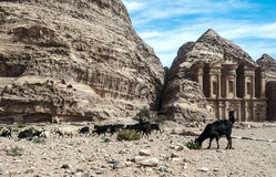 The Monastery of Petra Stock Photo