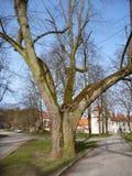 Monastery porta coelli in Tisnov in czech republic Stock Image