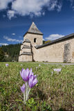 Monastery in Romanian Bucovina. Panoramic view over Bucovina, with blue sky, clouds and crocus Royalty Free Stock Photo