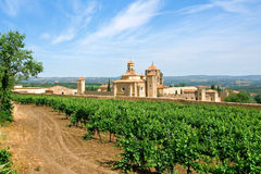 Monastery of Santa Maria de Poblet. And vineyards Royalty Free Stock Photos