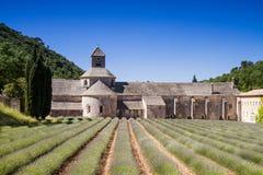 Monastery of Senanque Royalty Free Stock Image
