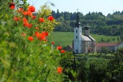Monastery Sisatovac  in Serbia. Monasterey Sisatovac episcopal church in Fruska Gora, Serbia Royalty Free Stock Photography