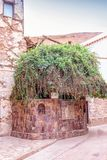 Monastery of St. Catherine Sinai Mount Moses, burning bush royalty free stock photos