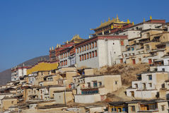 Monastery in  Tibet. Sunny view of  Gedan Songzanlin Lamaist Temple in Shangrila,Yunnan province,it is caled little  potala palace Royalty Free Stock Image