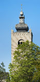 Monastery towers behind tree tops Stock Photography