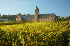 Monastery with a vineyard. In front of it Stock Images