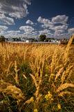 Monastério de Suzdal Fotos de Stock Royalty Free