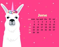 Monatskalender für Juni 2020 von Sonntag bis Samstag Nettes Lamaeinhorn Alpakazeichentrickfilm-figur Lustiges Tier vektor abbildung