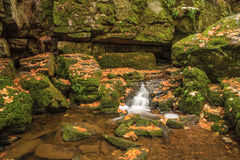 The Monbach brook in the nature reserve Monbachtal Stock Photography