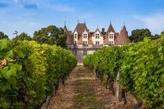 Monbazillac Castle με τον αμπελώνα, Aquitaine, Γαλλία στοκ εικόνες
