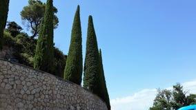 Moncerrat monastry territorium cypresses arkivbilder