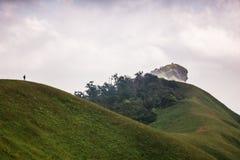 Monchong charmigt berg Arkivbild