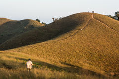 Monchong charmigt berg Royaltyfri Bild