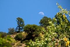 Mond über Hügel Stockbild