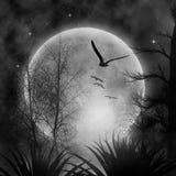 Mond lizenzfreies stockfoto