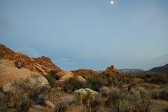 Mond, der bei Joshua Tree National Park steigt lizenzfreie stockfotografie