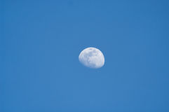 Mond an der Dämmerung Stockfoto