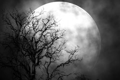 Mond in der Nacht furchtsam Lizenzfreie Stockfotos