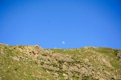 Mond im blauen Himmel über Berg Stockbilder