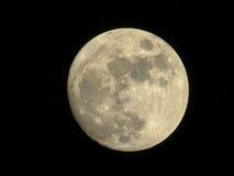 Mond im dunklen nächtlichen Himmel Stockbild