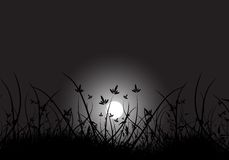 Mond im Gras Lizenzfreies Stockfoto