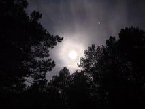 Mond-Licht Lizenzfreies Stockbild