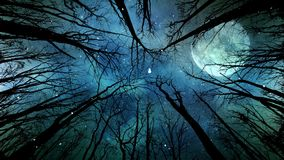 Mond-Licht und Schnee durch die Bäume 4K stock footage