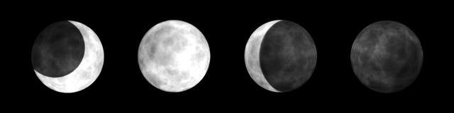 Mond-Phasen vektor abbildung