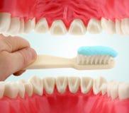 Mond van binnenuit en tooth-brush Royalty-vrije Stock Foto