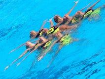 monde 2009 de fina de championnat Images stock