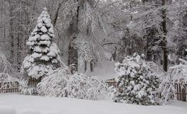 Monde blanc après tempête de neige Images stock