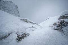 Monde congelé blanc rampant en brouillard images stock