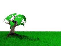 monde d'arbre Photos libres de droits