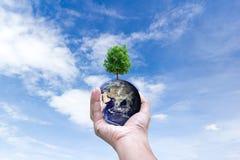 Monde d'environnement dans des mains tenant la terre d'amour et des arbres des éléments de cette image meublés par la NASA Photo stock